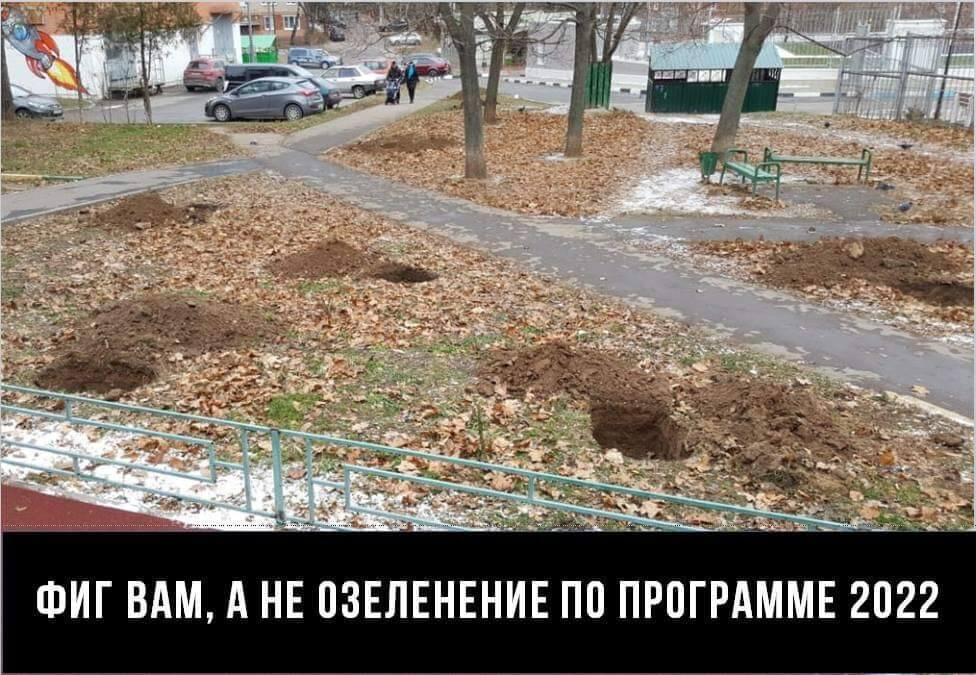 О компенсационном озеленении